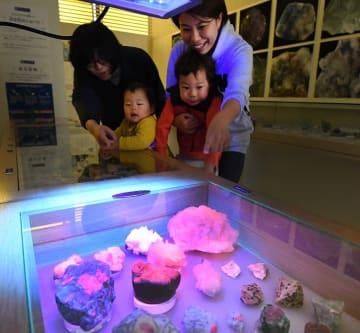 紫外線を当てると光る鉱物などが並ぶ特別展=福井県福井市の県立こども歴史文化館