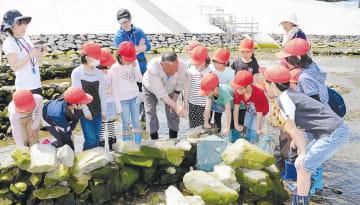 伝統のザワ漁を見学する児童たち