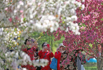 爽やかな初夏の景色 遼寧省瀋陽市