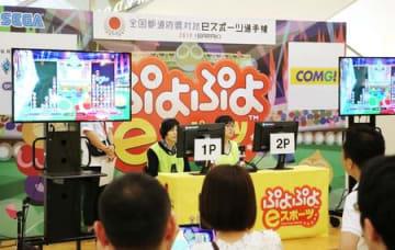 白熱した「ぷよぷよeスポーツ」県代表決定戦の決勝戦=11日、新潟市江南区