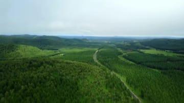 人工森林「塞罕壩」が生み出す緑の奇跡 河北省