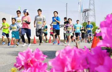鯖江つつじマラソンで、ツツジで彩られたコースを駆け抜ける親子ランナー=5月12日、福井県鯖江市東鯖江3丁目