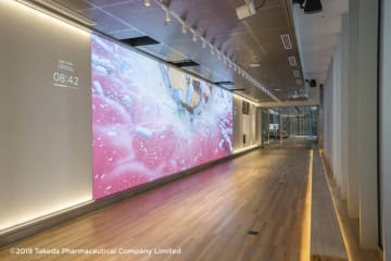 横幅10メートルの大型LEDモニター