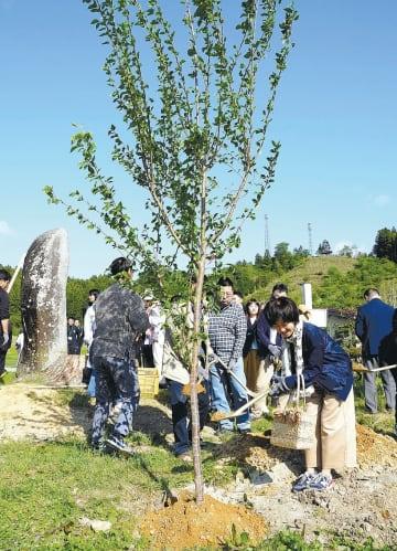 サクラの苗木を植樹する参加者