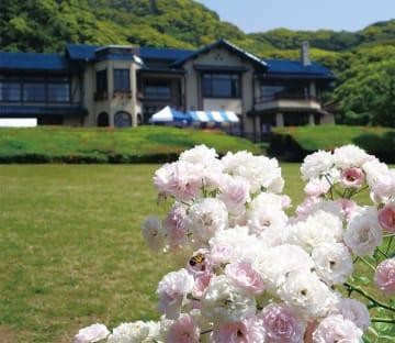 鎌倉文学館で春の特別展「三島由紀夫『豊饒の海』のススメ」別会場で講演会も