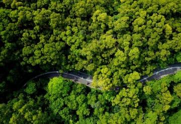 緑道散策で自然に親しむ市民 福建省福州市