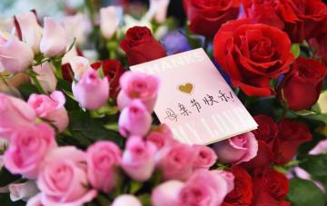 「雲養媽」、ネットで親孝行 中国の若者