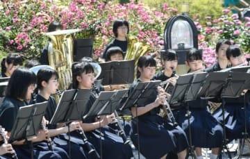 バラに囲まれたステージで演奏する花乃井中学の吹奏楽部