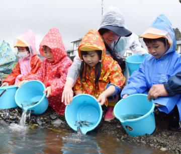成長を願ってアユの稚魚を放流する世田米保育園の子どもたち