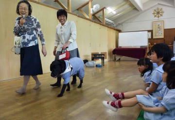 寺西さん(中央)の指示を受けて歩く盲導犬の様子を見学する園児ら=京都市北区・大徳寺保育園