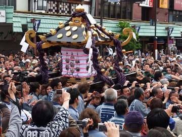 三社祭で下町を練り歩く本社みこし(©公益財団法人東京観光財団)