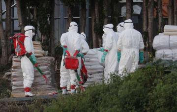 豚コレラが発生した愛知県田原市の養豚場周辺で防疫作業を進める作業員=17日夕