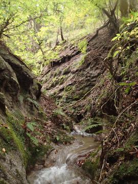 十石堀の導水路「堀割」部分(北茨城市提供)