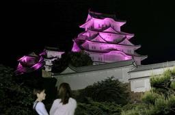 炎症性腸疾患への理解を広げようと紫色の光に照らされた姫路城=19日夜、姫路市本町