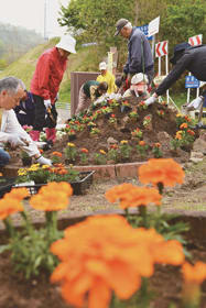 花壇に春を彩る花苗を植える町会関係者