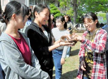 動物との触れ合い方を学ぶ授業で、ヘビに触る学生