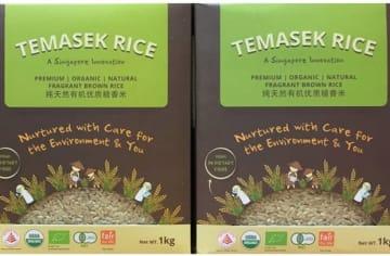 TLLはシンガポール初の国産コメ・ブランド「テマセクライス」の植物品種保護権を取得した(同社公式サイトより)
