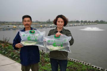 環境に配慮した「レーン」による養殖モデルを導入 浙江省湖州市