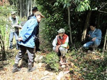 イノシシによる被害を市職員らと調べる清水校区6町内自治会のメンバーら。この場所ではタケノコの被害(中央下)が確認された=4月、熊本市(藤井由幸さん提供)
