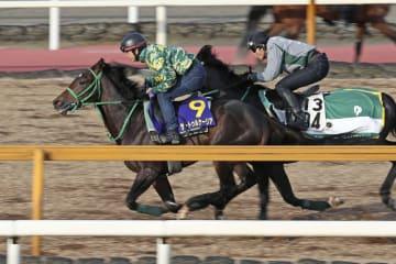 日本ダービーに向けた最終追い切りで併せ馬に先着するサートゥルナーリア(左)=栗東トレーニングセンター