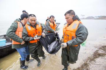 江西省、「水中のパンダ」スナメリ保護を強化