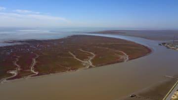 空から見た遼河口国家級自然保護区 遼寧省盤錦市