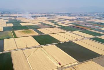 収穫期を迎え刈り取り作業が進む麦畑=27日午前、小山市上泉、小型無人機から