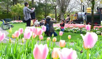 多くの家族が訪れたフローランテ宮崎のイベント=3月、宮崎市
