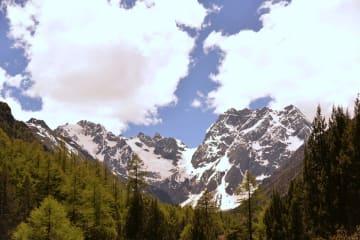 白馬雪山国家級自然保護区を訪ねて 雲南省