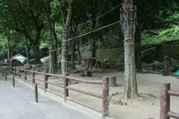 C群が出てこず、閑散とした寄せ場=28日午前、大分市の高崎山自然動物園