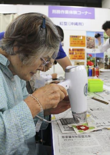 「全国矯正展」で、沖縄刑務所が刑務作業として実施している伝統的な染色技法「琉球紅型」を体験する来場者=31日午前、東京都千代田区