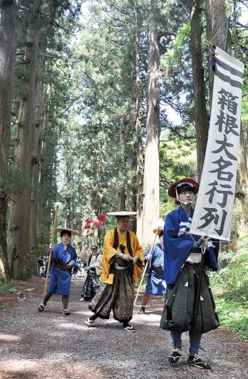 杉並木を通り抜ける大名行列