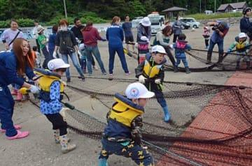 懸命に網を引っ張る園児と保護者ら