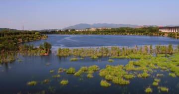 北京密雲ダム、枯渇続く潮河に放水