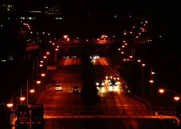 国道507号の街灯の光でピカチュウの形が浮かび上がった=30日午後8時17分、八重瀬町(国吉聡志撮影)