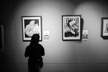 「セルバンテスとドン·キホーテ国際漫画展」開催 46の国と地域から参加 貴州省貴陽市