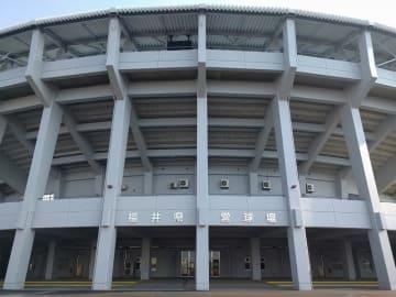 福井県営球場