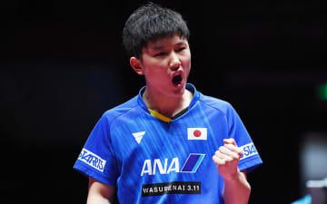 張本智和 Photo:Itaru Chiba