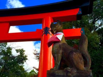 NTTデータ等がソーシャルビッグデータを活用したインバウンド関連の調査を実施。SNS投稿から東京ディズニーランド訪問者はUSJも訪れ関西圏のスポットと高相関で関西圏に観光客が流れていると分析。