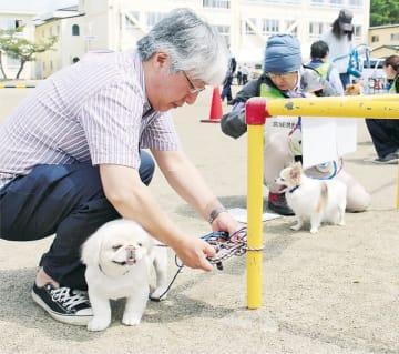 ペットを係留エリアにとどめる訓練を行う参加者