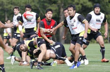 練習する流(手前右)、茂野(同左)らラグビー日本代表=11日、宮崎市