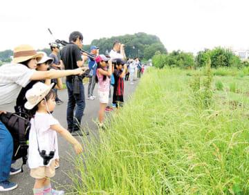 見沼田んぼに飛来した鳥を観察する親子ら=8日午前、さいたま市緑区