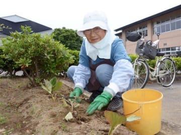 ボランティアで日吉東小の環境美化活動を続ける中村十志子さん=熊本市南区