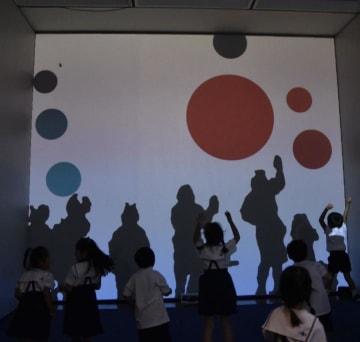 自分の影を動かしてスクリーンのボールを弾く仕掛けの作品=14日午後、松山市堀之内