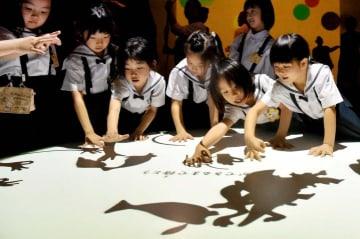 手の影から変わった動物の影が次々と生まれるテーブル=14日午後、松山市堀之内