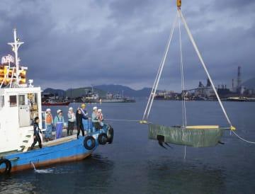 北九州市小倉北区の港に迷い込み、沖合に連れ戻すためクレーンでつり上げられるクジラ=15日夕
