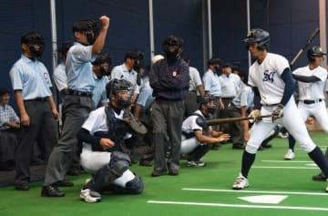投球判定の練習に励む審判員=マスカット補助