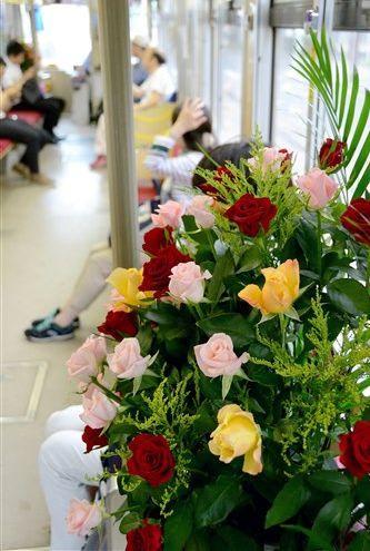 父の日に合わせて熊本市電に飾られたバラ=熊本市中央区