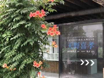 日本アニメアートの巨匠・天野喜孝氏の展覧会、上海で開催