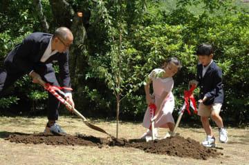 力を合わせて桜を植える海老蔵さん親子=16日、成田山公園